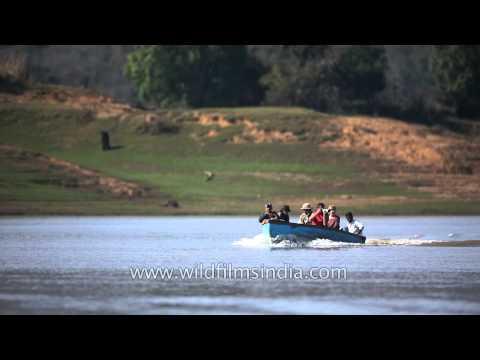 Denwa River: the lifeline of Satpura National Park