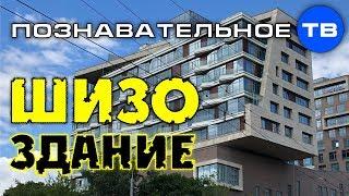 ШИЗОздание (Познавательное ТВ, Артём Войтенков)