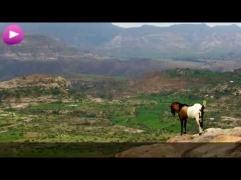 Ethiopia Wikipedia travel guide video. Created by Stupeflix.com