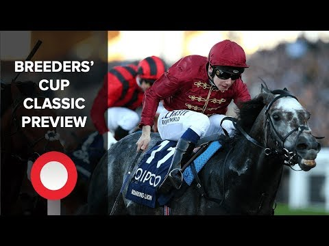 Breeders' Cup Classic Preview: can Roaring Lion dish the dirt at Churchill Downs?