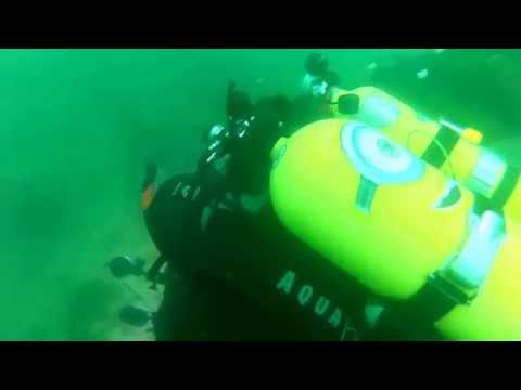 1 10 2016 Dive 1 Otakou Wharf With Andrew