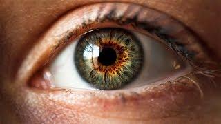 КАК УБЕРЕЧЬ ЗРЕНИЕ? Советы в Международный день зрения