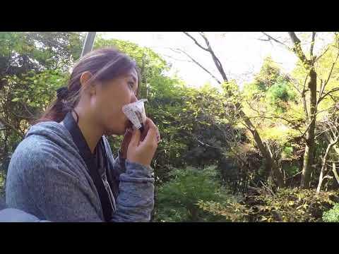 Mt. Takao Fall 2017