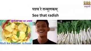 Sanskrit Food song on Despacito