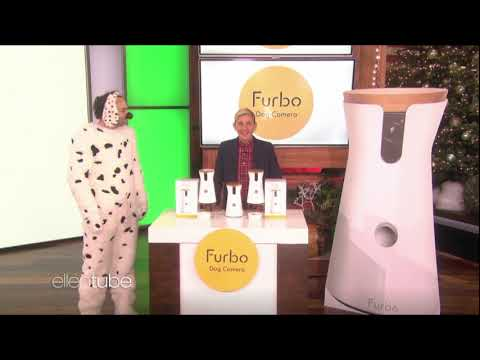 best-dog-training-camera-featured-on-the-ellen-show