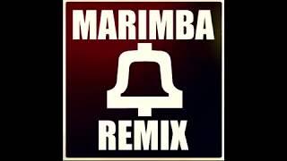 Teach Me How To Dougie Marimba Remix Video