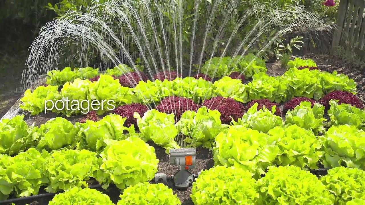 Systeme Arrosage Potager Vacances quand l'arrosage du jardin devient très simple ! - pauly