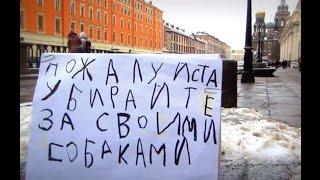 Обращение девочки из Петербурга к владельцам собак.