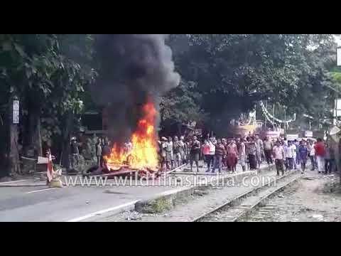 Darjeeling GJM Vs Police
