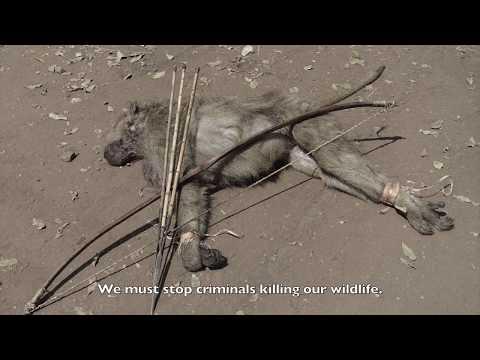 New Wildlife Act Malawi 2017