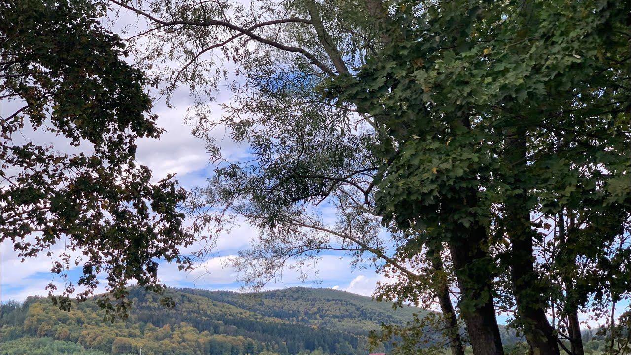 Hora si batuta muzica populara și muzica de petrecere cu formatia Basarabia