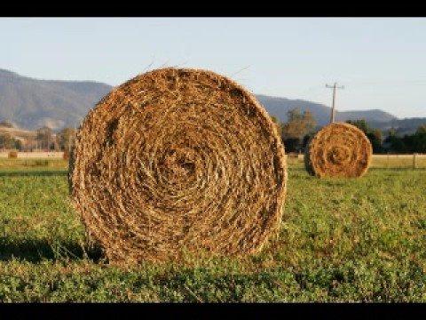 saw doctors hay wrap