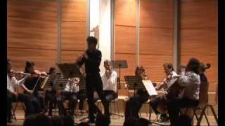 Instant video play t g albinoni op 9 n 5 concerto for Adagio amsterdam
