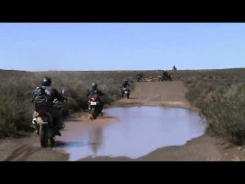 Namibsroos