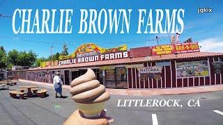 Charlie Browns Farms Littlerock, CA
