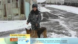 Служебные собаки на пенсии   Доброе утро   Первый канал