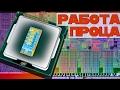 Как работает процессор: частоты, шины и т.д.