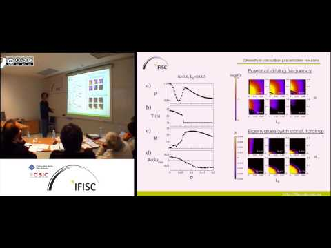 Phase transitions induced by diversity and examples in biological systems