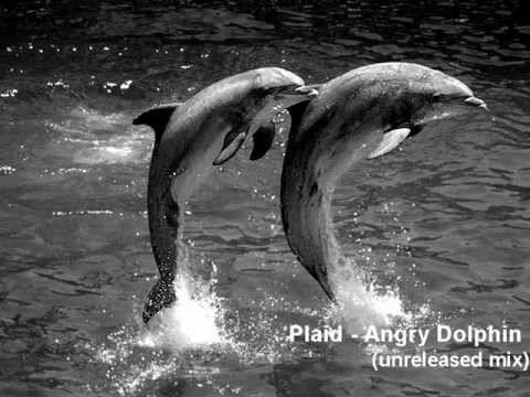 Plaid - Angry Dolphin (unreleased mix) 1998