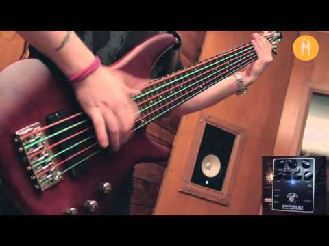 Korn - Got the life (Rodrigo Aranda Bass Cover Darkglass B7K Demo)