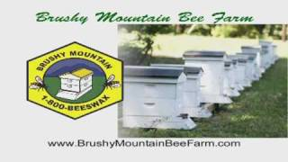 Brushy Mountain Bee Farm