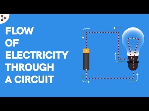 Flow of Electricity through a Circuit - CBSE 6
