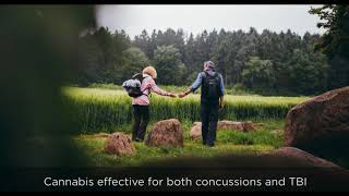 Studies Show Cannabis Decreases Brain Swelling Pain And Inflammation