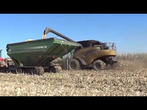 Illinois Corn Harvest 2014 -  Kincaid Farms