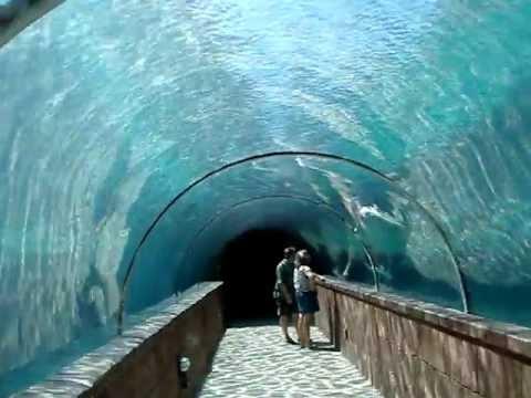 Walking through Atlantis underwater tunnel in Nassau, Bahamas
