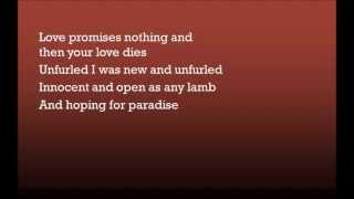 Garbage  I Hate Love (lyrics)