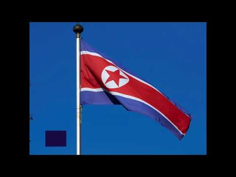 UN: Four North Korean cargo ships are prohibited from docking at ports all over the world
