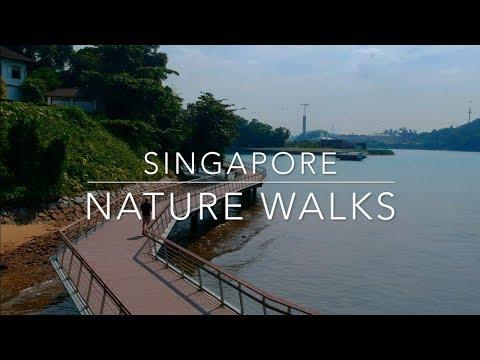 Singapore nature walks guide