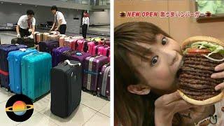 10 dowodów, że Japonia to kraj jak żaden inny