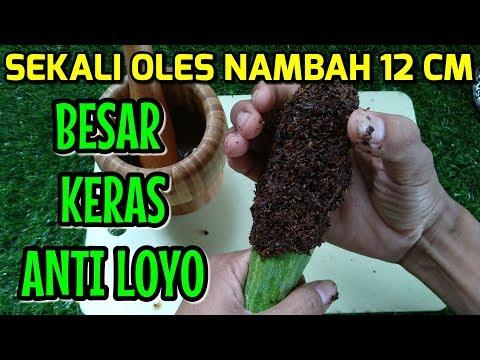 WOW ! NAMBAH 12 CM HANYA SEKALI OLES, RAHASIA BESAR DAN PANJANG
