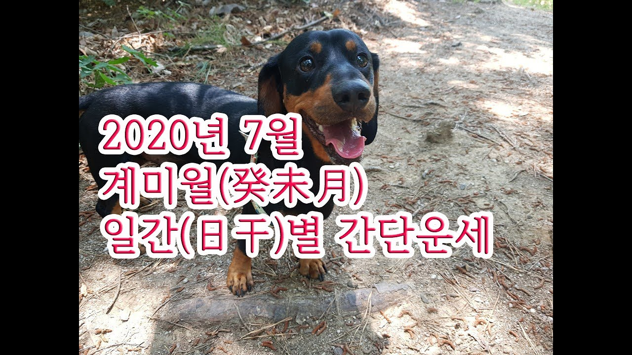 2020년 7월 계미월(癸未月)일간(日干)별 간단운세(한글자막有)
