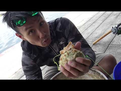 ซับไทย Mekong Giant Catfish Rig For Under B5000 And How To Mix Bread Bait