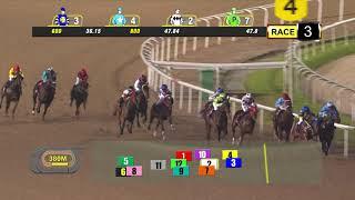 Vidéo de la course PMU CLASS 4