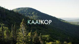 KAAIKOP