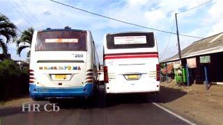 Bus Primajasa ngejar Saluyu menyalip,menikung,menanjak di Plered