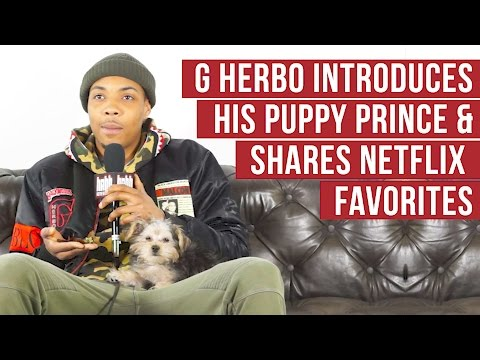 G Herbo Introduces Puppy Prince & Shares Netflix Favorites