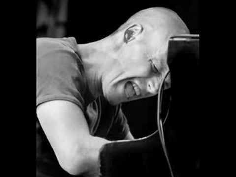 Esbjörn Svensson Trio -  Serenade For The Renegade