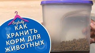 Хранение сухого корма для домашних животных. Заготовки мяса для кота.