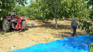 Hilal Ceviz Hasat Makinası 2017 Video