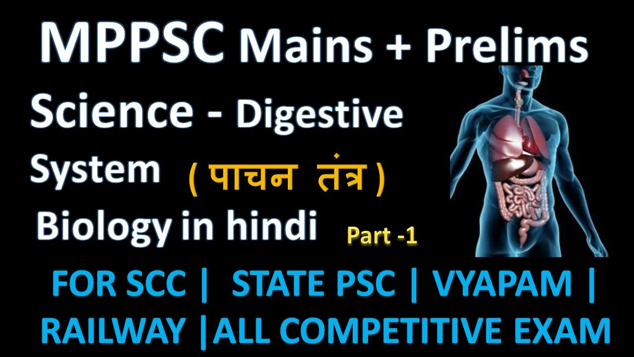 Science human digestive system in hindi parts of the ds mp science human digestive system in hindi parts of the ds mppscssccompetitive exammppsc ccuart Image collections