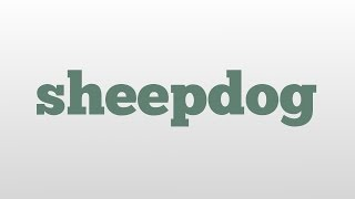 sheepdog meaning and pronunciation