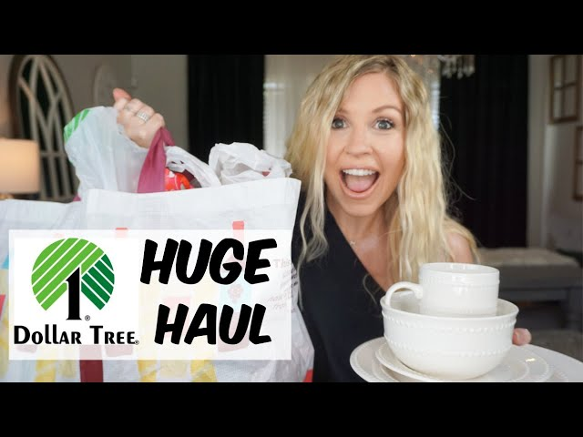 HUGE Dollar Tree Haul with AWESOME NEW Finds January 2020| Megan Navarro