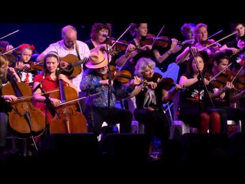 Melbourne Scottish Fiddlers Sparrows Wedding National Folk Festival 2015