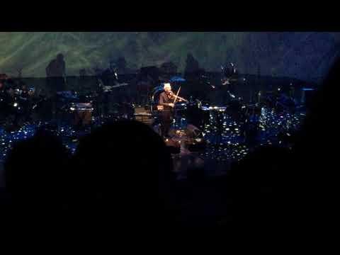 John Cale - Venus in Furs (Brooklyn Academy of Music, 16 Nov 2017)