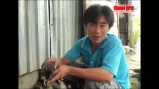 Kỳ lạ: Chó nuôi chuột cống ở Bạc Liêu