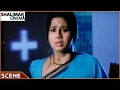 Maa Aayana Chanti Pilladu Movie || Sivaji , Sangeetha Love Scene ||  Sivaji, Meera Jasmine video